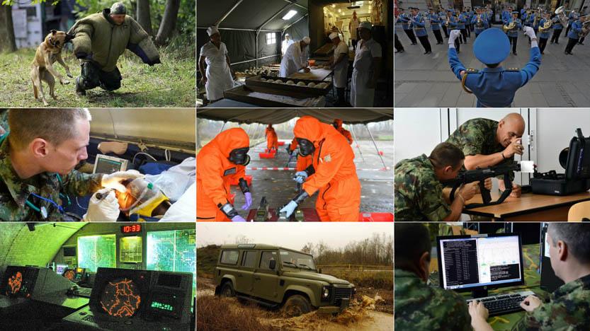 sluzbe-vojske-srbije.jpg