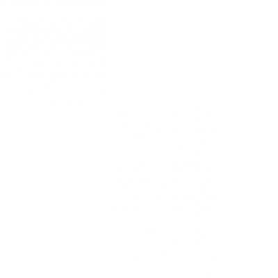 potpukovnik Branislav Stevanović