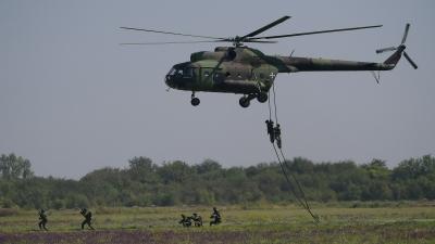 Приказ способности дела јединица Војске Србије