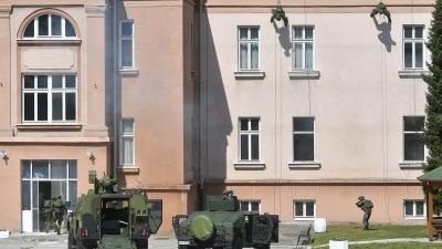 Приказ дела способности јединица Војске Србије у касарни Дедиње